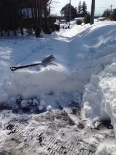 除雪before.JPG
